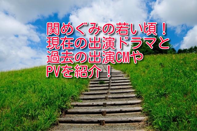 関めぐみの若い頃!現在の出演ドラマと過去の出演CMやPVを紹介!